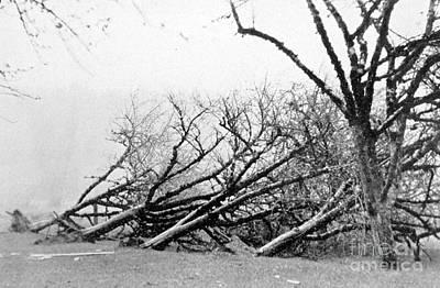 Dust Storm Damage, 1931 Poster