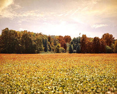 Early Autumn Harvest Landscape Poster