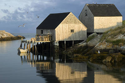 Early Morning At Peggys Cove Poster by Randall Nyhof
