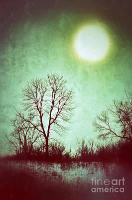 Eerie Landscape Poster