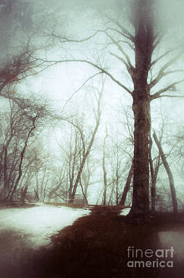 Eerie Winter Woods Poster
