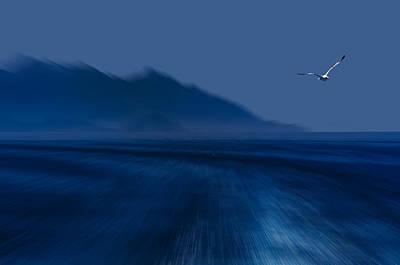 Poster featuring the photograph Elba Island - Flying Away - Ph Enrico Pelos by Enrico Pelos