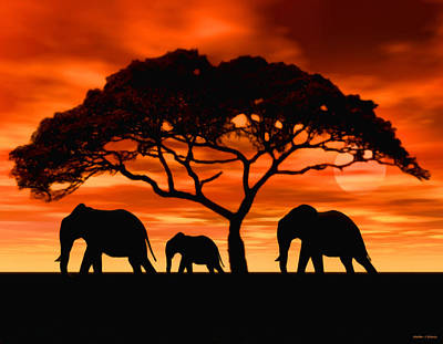 Poster featuring the digital art Elephant Sun Set by Walter Colvin