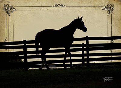 End Of The Day In Georgia - Horse Lovers Must See - Artist Cris Hayes Poster