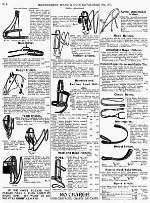 Equestrian Equipment, 1895 Poster