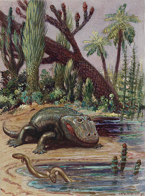 Eryops Were The Highest Type Of Life Poster