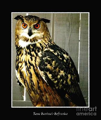 Eurasian Eagle-owl With Oil Painting Effect Poster by Rose Santuci-Sofranko