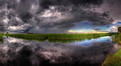 Everglades Reflection Poster by Nick  Shirghio