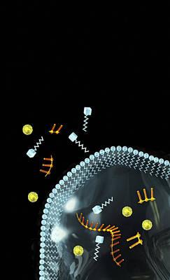 Evolving Protocell, Artwork Poster