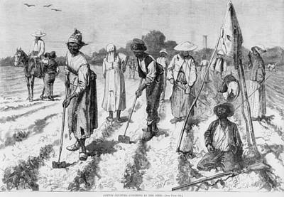 Ex-slaves, Working In A Gang Poster