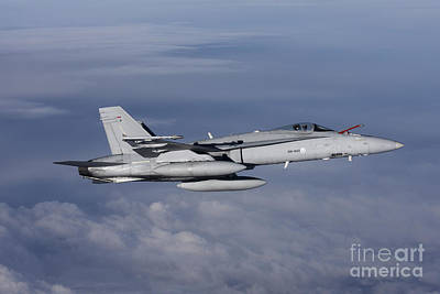 F-18 Hornet Of The Finnish Air Force Poster