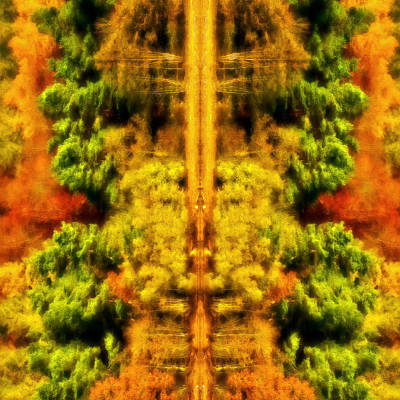 Fall Abstract Poster by Meirion Matthias