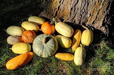 Fall Garden Harvest Sunset Poster by Gary Whitton