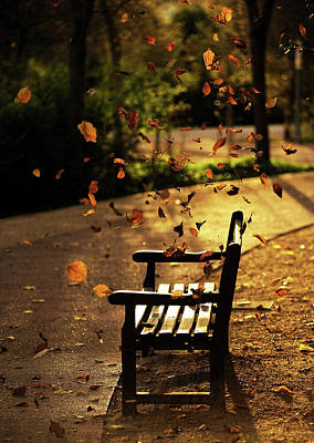 Fall Leaves On Park Bench Poster