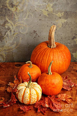 Poster featuring the photograph Fall Pumpkin And Decorative Squash by Verena Matthew