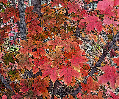 Fall Red Poster by David Pantuso