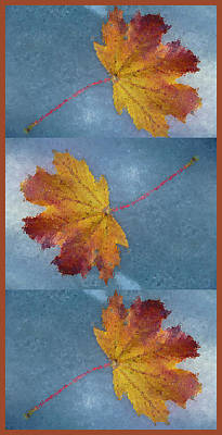 Falling Autumn Leaves Poster by Margie Avellino