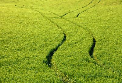 Farm Tracks Poster by Mike  Dawson