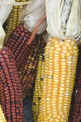Farmers Market - 010 Poster