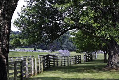 Farmland Shade Appomattox Virginia Poster by Teresa Mucha