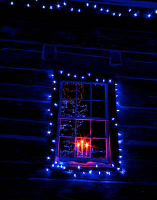 Festive Lights Poster by Andre Faubert