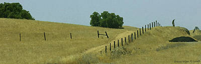 Field Fence Poster