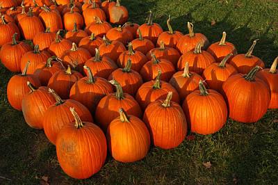 Field Of Pumpkins Poster by LeeAnn McLaneGoetz McLaneGoetzStudioLLCcom