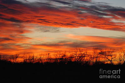 Poster featuring the photograph Fire In The Sky by Mark McReynolds