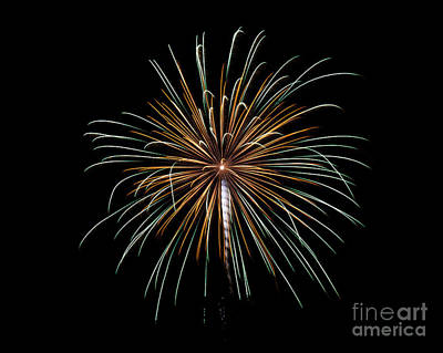 Poster featuring the photograph Fireworks 10 by Mark Dodd