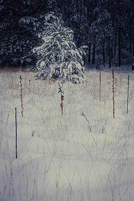 First Snow Poster by Scott Sawyer