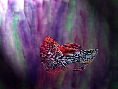 Fish Swimming In The Purple Poster by Mario Perez