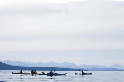 Five People Kayak In The Gulf Islands Poster by Taylor S. Kennedy