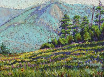 Poster featuring the painting Flagstaff Meadow by Drusilla Montemayor