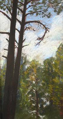 Poster featuring the painting Flagstaff Pines by Drusilla Montemayor