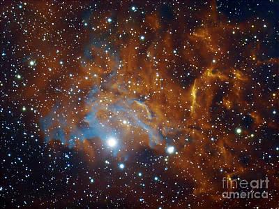 Flaming Star Nebula In Auriga Poster by Filipe Alves