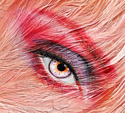 Flamingo Poster by Yosi Cupano