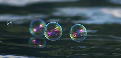 Poster featuring the photograph Floating Bubbles by Cathie Douglas