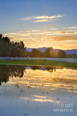 Flooded Pasture Country Sunset Poster
