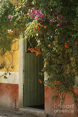Poster featuring the photograph Flower Bedecked Doorway Mineral De Pozos Mexico by John  Mitchell