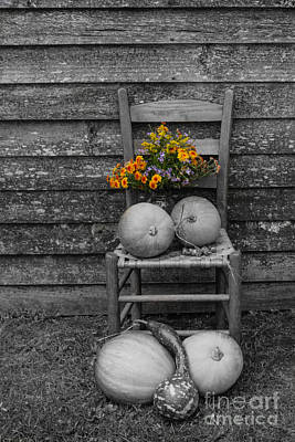 Flowers And Pumpkins Poster by Brenda Combs