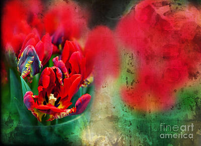 Poster featuring the photograph Flowers by Ariadna De Raadt