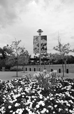 Flowers At Citi Field In Black And White Poster