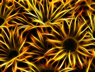 Poster featuring the photograph Flowers Of Flames by Joetta West