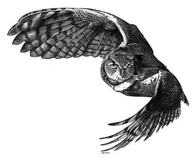 Flying Owl Poster