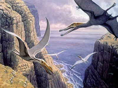 Flying Pterosaurs Poster