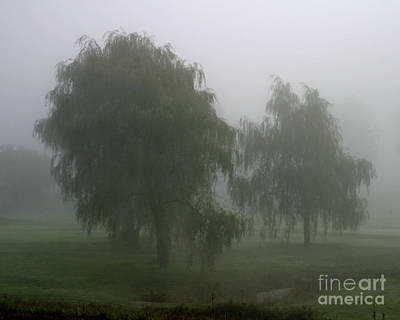 Fog II Poster