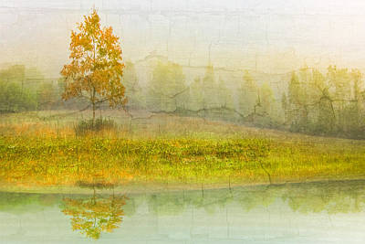 Foggy Meadow Poster