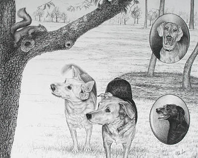 Four Dogs And A Squirrel Poster