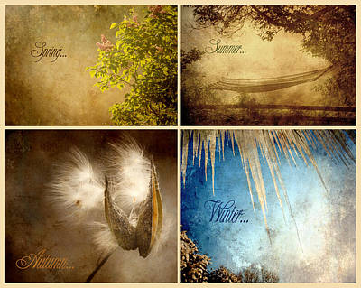 Four Seasons. Poster by Kelly Nelson