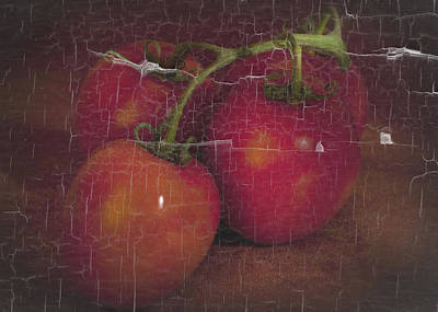 Four Tomatoes Crackle Poster by James Bethanis